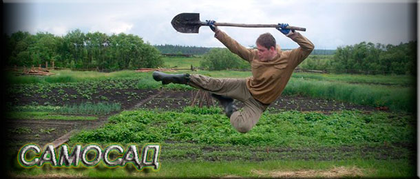 День огорода