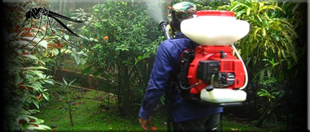 Защита от комаров у Вашего  мангала