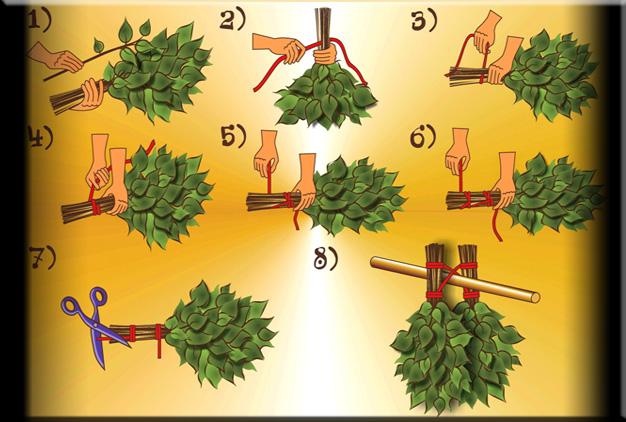 Как правильно заготовить веники для бани